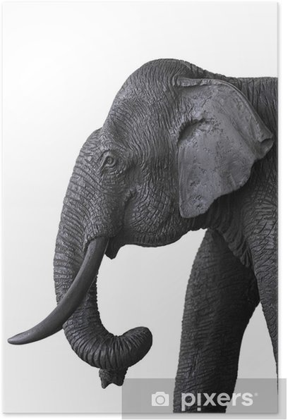 Plakát Dřevěný slon - Savci