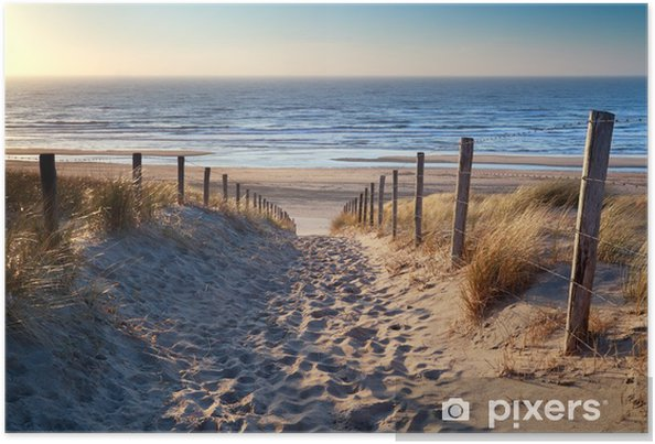 Plakat Droga do północnej plaży morskiej w złoto słońca - Przeznaczenia