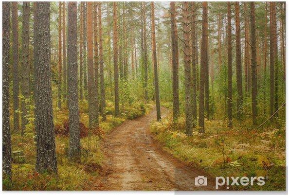 Plakat Droga Karelia - Europa