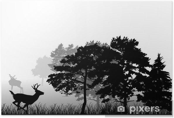 Plakat Drzew i jeleni działa sylwetkę - Ssaki