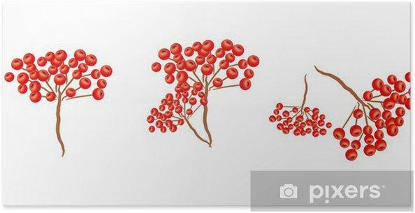 Plakat Drzewo jarzębiny - Drzewa