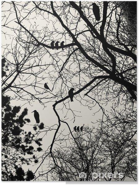 Plakat Drzewo - Style