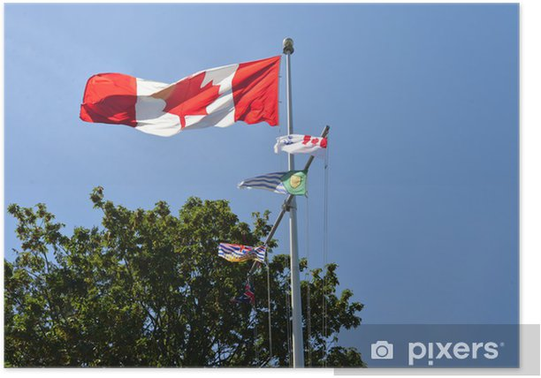 Plakat Dumni flagi w punkcie perspektywa - Ameryka