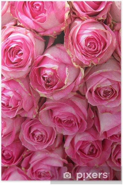 Plakat Duże różowe róże w centralnym ślubu - Świętowanie