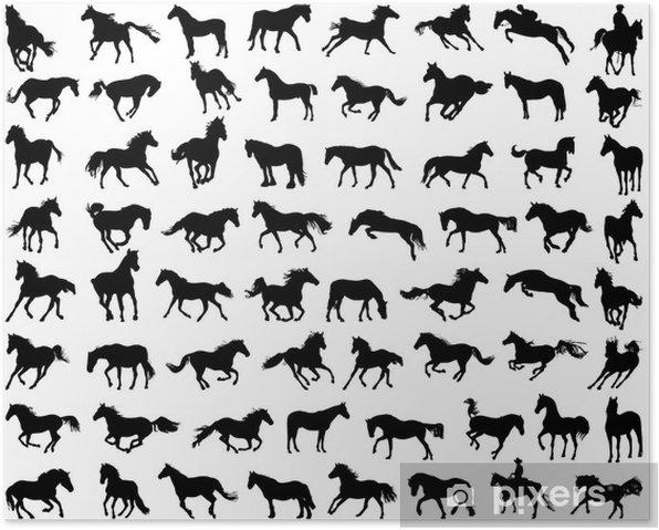 Plakat Duży zestaw silhouettes koni - Ssaki