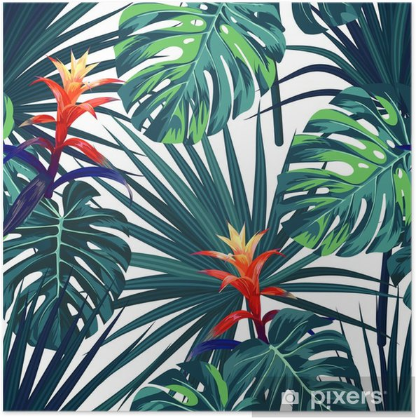 Plakat Egzotyczne tropikalny tło z hawajskich roślin i kwiatów. bezszwowe wektor wzór z zielonych liści monstera i sabal, guzmania kwiaty. - Rośliny i kwiaty
