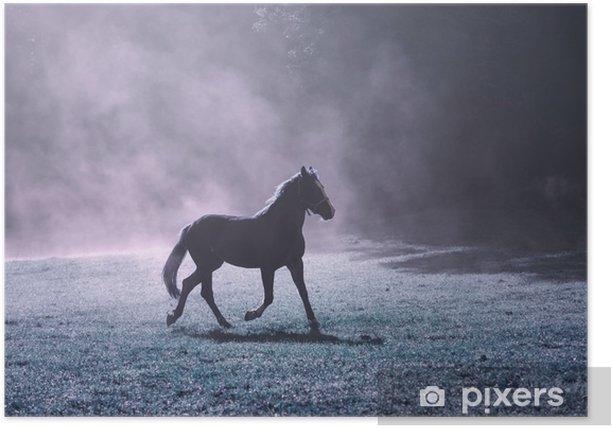 Plakát Fantasy ranní slunce louka s hnědým koně a fialovou mlhou. - Zvířata