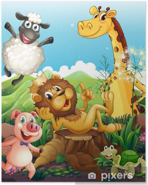 Plakat Figlarny zwierzęta - Ssaki
