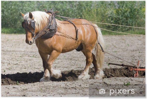 Plakat Firma Rolnictwo: rolnik i konia orki - Rolnictwo