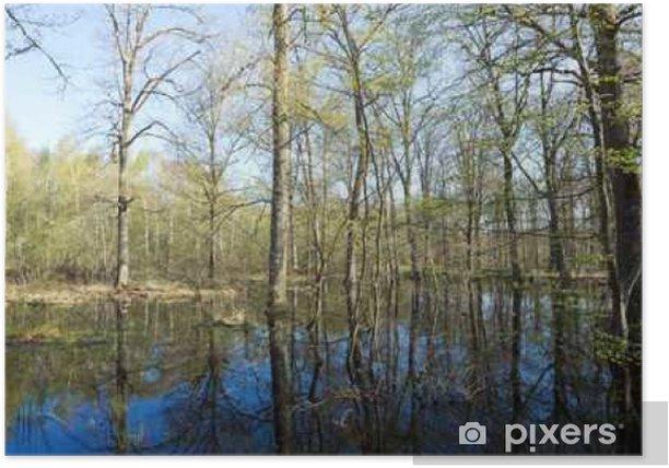 Plakat Forêt de Fontainebleau inondée - Krajobrazy