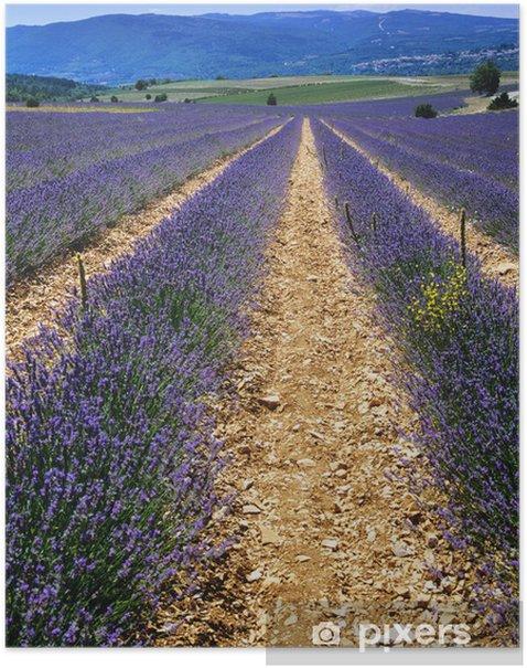 Plakat Francja - Rolnictwo