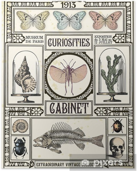 Plakat Gabinet osobliwości - Style