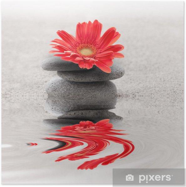 Plakat Galets et reflet Gerbera zen - Do salonu SPA & Wellness