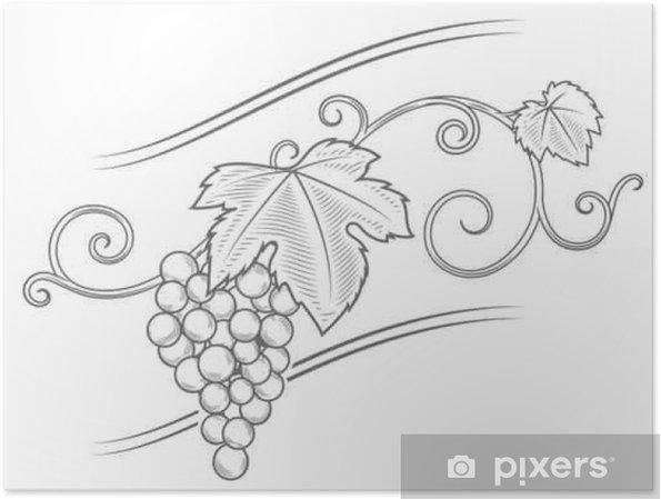 Plakat Gałęzie winogron ornament wektor - Zasoby graficzne