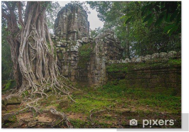 Plakat Gigant Banyan drzewo w Angkor Wat - Azja