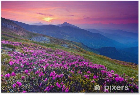 Plakat Górski krajobraz - Łąki, pola i trawy