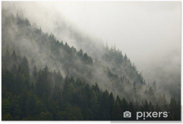 Plakat Górskie drzewa we mgle - iStaging