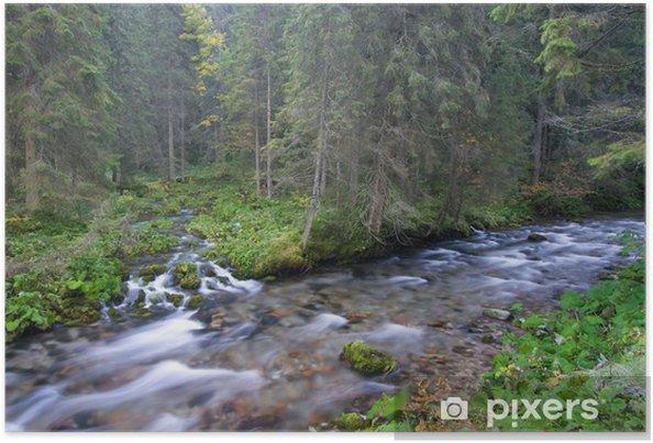 Plakat Górskie potoki w lesie - Woda