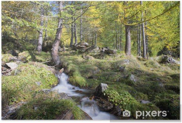 Plakat Górskiego potoku jedwabiu wody w sezonie jesiennym - Woda