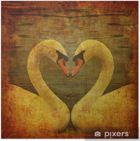Plakát Grunge pohlednice s dvěma labutěmi v lásce. - Struktury