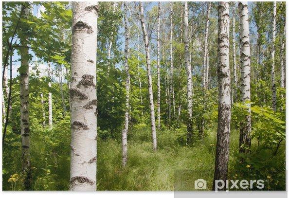 Plakát Háj brezový - Témata