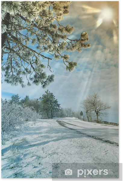 Plakat Icy drzewo i wiązki niedz w snowy krajobrazu - Pory roku