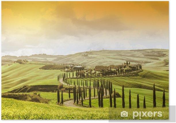 Plakat Idylliczny krajobraz Toskanii z drzewa cyprysowego. największa atrakcja we Włoszech. słynny cel podróży - Podróże