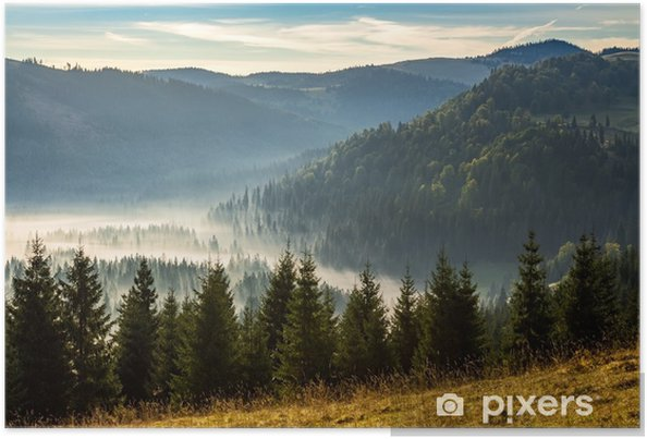 Plakat Iglasty las w mgliste rumuńskie góry o wschodzie słońca - Krajobrazy