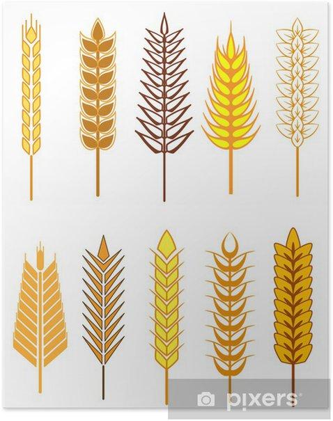 Plakat Ikony ustaw zbożowych uszy - Rolnictwo