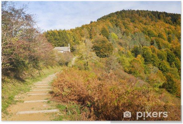 Plakát Irati les na podzim, Navarre (Španělsko) - Evropa
