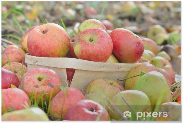 Plakat Jabłka w zasobniku - Rolnictwo