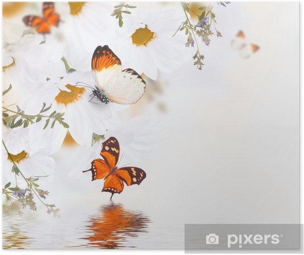 Plakát Jarní kytice sedmikrásky a motýl, květinové pozadí - Témata