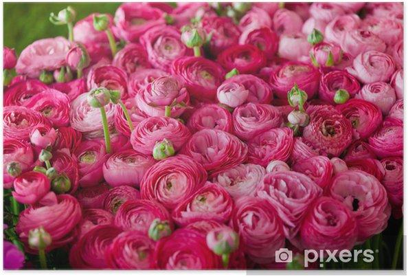 Plakat Jaskry # 3 - Kwiaty