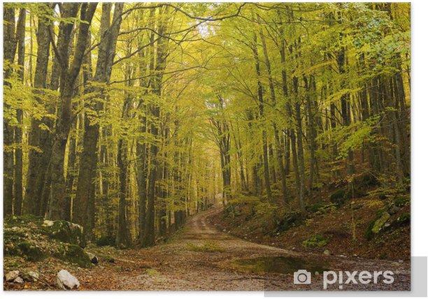 Plakat Jesień Vallura (Pizzone (IS) - Góry