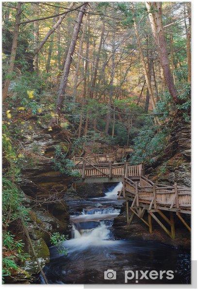 Plakat Jesienią creek z szlaków turystycznych i liści - Pory roku
