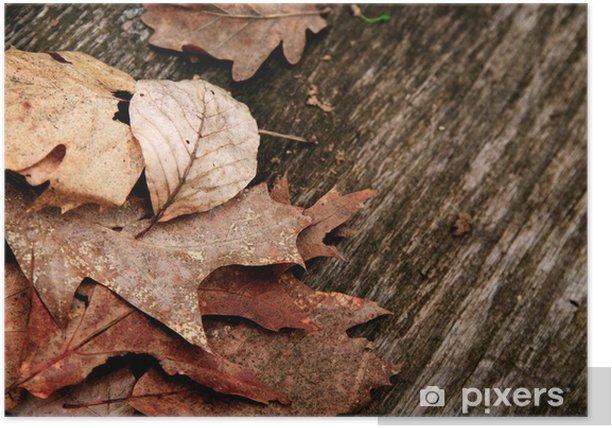Plakat Jesienią liści na pokładzie - Pory roku