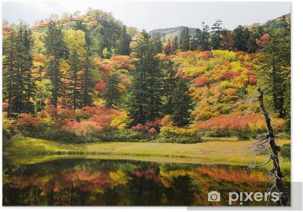 Plakat Jesienne liście Oczywiście Taisetsu Plateau Swamp Tour wodospad Minuma - Pory roku
