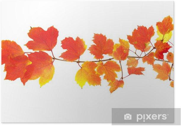 Plakat Jesienne liście - Pory roku
