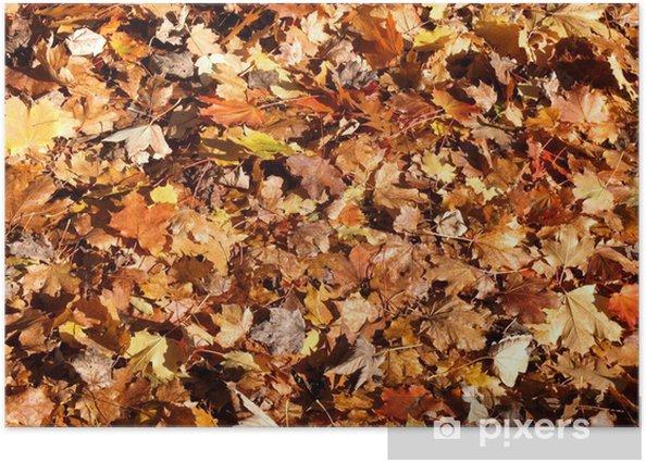 Plakat Jesienne Liście - Tekstury