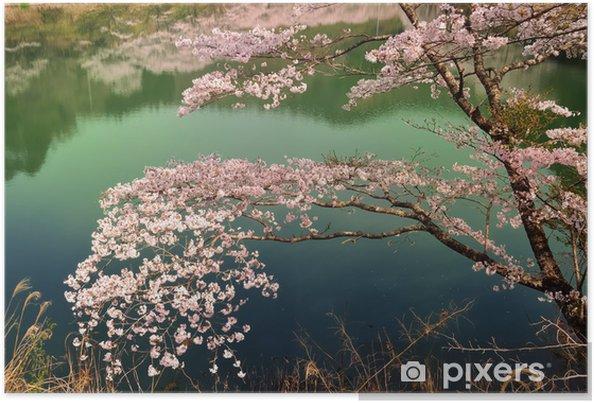 Plakat Jezioro の Sakurai - Pory roku
