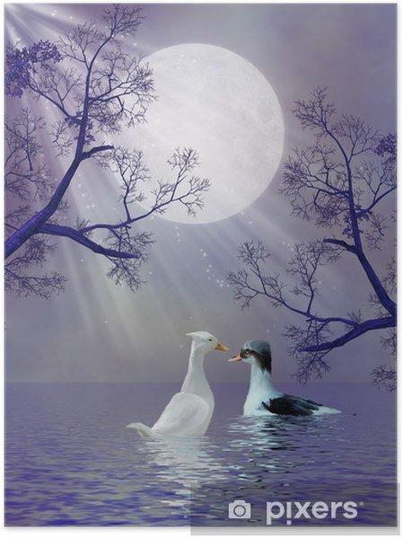 Plakát Kachny - Přírodní krásy