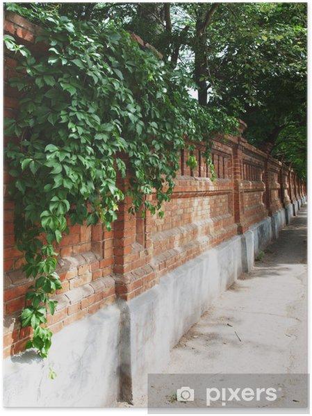 Plakát Kamenná zeď starého cihel s břečťanem a vinné révy - Památky