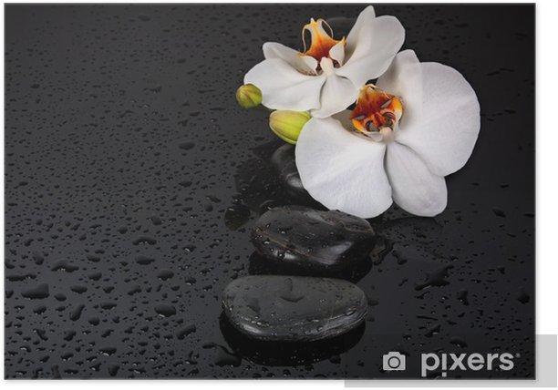 Plakat Kamien spa - Kwiaty