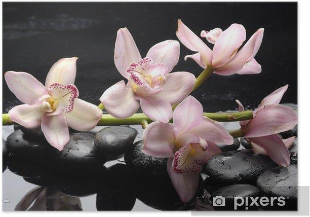 Plakat Kamienie terapii z różowa orchidea - Cuda natury