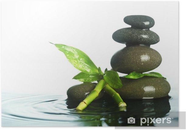 Plakat Kamienie w wodzie - Rośliny