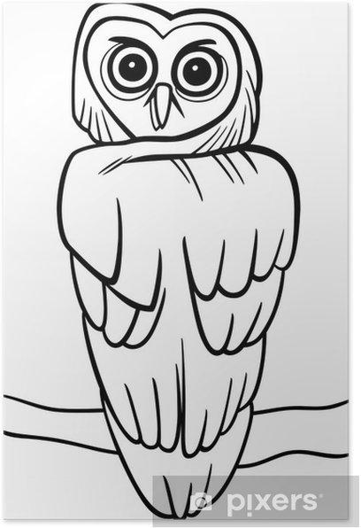 Plakát Karikatura sova na omalovánky - Ptáci