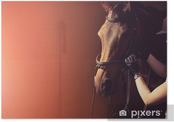 Plakat Kobieta mocowania uzdę konia - Zwierzęta