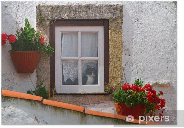 Plakát Kočka v okně plné květin - Savci