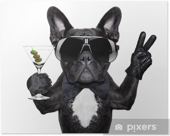 Plakat Koktajl pies pokój - Naklejki na ścianę