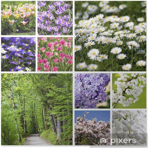 Plakát Koláž s jarními květinami - Roční období